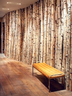 "Birch trees lining this hallway were adhered to the plywood wall, covered in a light coat of plaster, with hidden screws. The team at Highline Partners sourced more than 100 trees with a three-inch diameter—""not as easy as you might think,"" Thesing says."