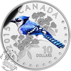 Coin Gallery London Store - Canada: 2015 $10 Colourful Songbirds of Canada - The Blue Jay Silver Coin, $64.95