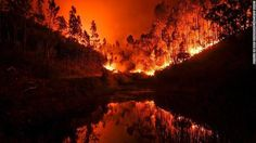 FEATURED POST  @kempterfirewire -  Wildfire kills at least 61 people in Portugal. Some victims burned in their cars while trying to flee officials say - CNN . . TAG A FRIEND! http://ift.tt/2aftxS9 . Facebook- chiefmiller1 Periscope -chief_miller Tumbr- chief-miller Twitter - chief_miller YouTube- chief miller  Use #chiefmiller in your post! .  #firetruck #firedepartment #fireman #firefighters #ems #kcco  #flashover #firefighting #paramedic #firehouse #firstresponders #firedept  #feuerwehr…