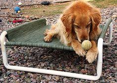 Rover Company ~ Raised Pet Beds, Pet Gates & Pet Enclosures...