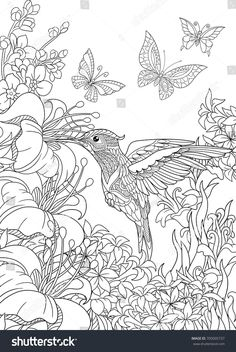 Coloring Page Of Hummingbird Butterflies And Hibiscus Flowers Freehand Sketch Drawing For Adult Antistress Book In Zentangle Style