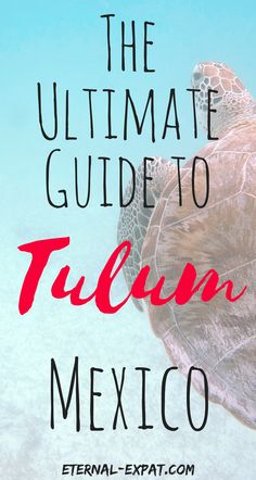 The ultimate guide to Tulum, Mexico - what to do in Tulum without completely breaking the bank!