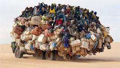 overpopulation -