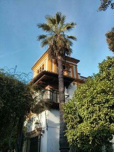 Trasera barrio de Santa Cruz. Sevilla