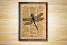 Dragonfly dictionary page Animal print by CrowDictionaryPrints