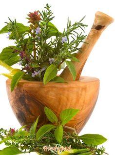 Olive wood mortar & pestle