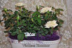 Blomsteraffär i Landskrona Leverans av blommor, buketter eller något annat från vårt sortiment. 25:e Maj 2014 Söndag är det Mors Dag Världens Blommor har blommor och presenter Världens Blommor Norra Långgatan 16 Landskrona 0418 65 11 59