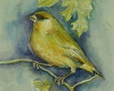 Greenfinch, Original Paintings, Watercolor, Vintage, The Originals, Gallery, Etsy, Unique Jewelry, Handmade Gifts