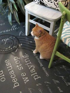 Floor stenciling with Chalk Paint®. Concrete floor stenciled with our lettering stencil Springtime in Paris and more!
