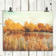 """landscape, photograph, fall leaves, fall colors, large wall art, wall decor, modern home decor, rustic decor, wall art -""""Every Little Thing"""" on Etsy, $12.00"""