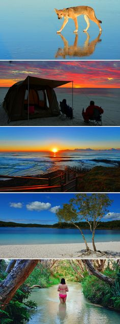 [orginial_title] – Let's Grow There 🌎 Travel Writer & Outdoorist Fraser Island Camping Tips Tips for an adventure on Fraser Island, Australia Winter Camping, Go Camping, Camping Ideas, Camping Hacks, Camping Packing, Outdoor Camping, Camping Holidays, Camping Kitchen, Beach Camping