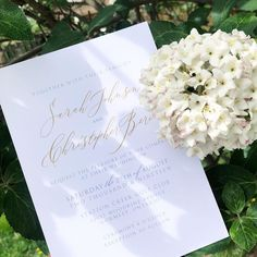 """Write It Out Loud on Instagram: """"I love using script fonts for the names since they are the most important part of the entire invitation. Do you agree?  #weddinginvitations…"""" Script Fonts, Out Loud, Wedding Invitations, Names, Place Card Holders, Writing, My Love, Instagram, Wedding Invitation Cards"""