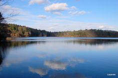 Walden Pond <3