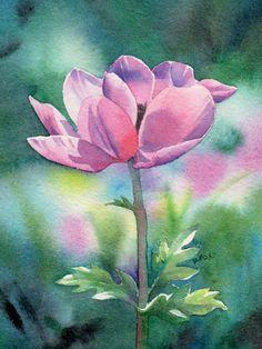 Watercolor Paintings Of Flowers   Barbara Fox - Daily Paintings: WINDFLOWER (SOLD) watercolor floral
