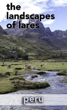 Trekking through the Lares Valley on your way to Machu Picchu in Peru is so beautiful. Here are some of the landscapes you'll see along the way. http://www.larestrek.org/