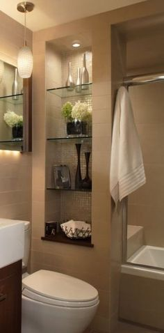 Shelves built between studs for storage by the toilet