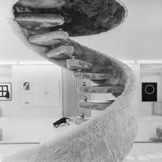 Fur spiral staircase