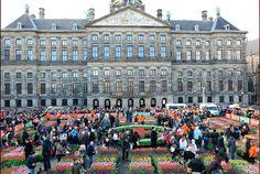 1月16日はオランダのチューリップの日