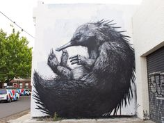 #art #streetartist Photos ©Roa