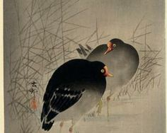 Two Gallinules - Ohara Koson