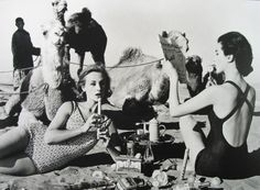 William Klein (American, b. Tatiana + Marie Rose + Camels, Tea Party, Morocco (Vogue), 1958 Gelatin silver - Available at 2015 November 13 Photographs. Photo Vintage, Vintage Photos, Vintage Swim, Vintage Style, Norman, Photos Rares, William Klein, Berenice Abbott, Vintage Fashion Photography