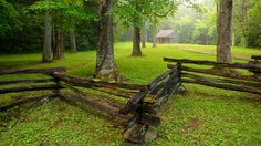 Cades Cove covered in green!