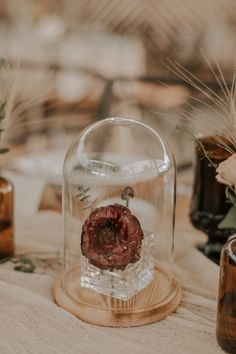 This Couple Used a Muted Color Palette to Incorporate Their Love of the Desert into Their Barr Mansion Wedding in Austin Homemade Wedding Centerpieces, Inexpensive Wedding Favors, Pumpkin Centerpieces, Flower Table Decorations, Flower Centerpieces, Centerpiece Ideas, Unusual Wedding Gifts, Southwestern Wedding, Wedding Motifs