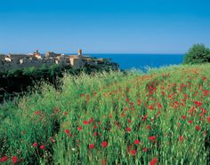 The medieval village just a short walk from the villa! Alpine Lake, Places In Italy, Regions Of Italy, Holiday Resort, The Beautiful Country, Elba, Trip Advisor, Vacation, Nature