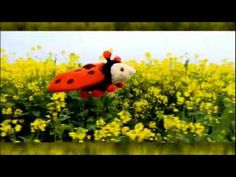 Sesamstraat Lief Lieveheersbeestje Pino.mpg - YouTube