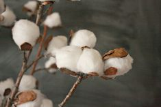 DIY Cotton Stems from Simple Household Items - Twelve On Main Cotton Decor, Cotton Crafts, Flower Crafts, Diy Flowers, Tulle Christmas Trees, Mother Daughter Projects, Cotton Wreath, Crafts To Sell, Diy Crafts