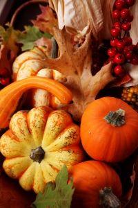 Fall Harvest Decorating Ideas....