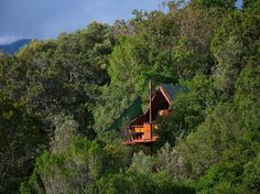 Teniqua Treetops (Sedgefield, South Africa) - Cottage Reviews ...