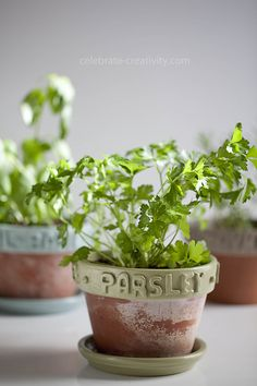 DIY: customized pots with easy-to-make clay labels