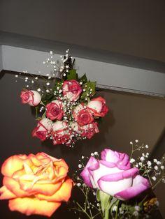 Disarranged Flowers