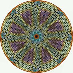 """""""Vortex"""" diatom"""