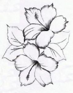 flower tattoo designs free old latin tattoo fonts bible verse tattoos, Tattoo, . flower tattoo designs free old latin tattoo fonts bible verse tattoos. Flower Sketches, Drawing Sketches, Art Drawings, Flower Drawings, Free Tattoo Designs, Flower Tattoo Designs, Tatuagem Em Latin, Coloring Books, Coloring Pages