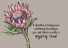 Hand drawn protea flower for a brand identity project. The boho feel of this clothing boutique is targeting those with a gypsy soul. Illustrated on the Procreate app on an iPad Pro, by Flock Type. Watercolor Projects, Watercolor Art, Brand Identity, Branding, Tea Illustration, Protea Flower, Draw Flowers, California Outfits, Kids Inspire