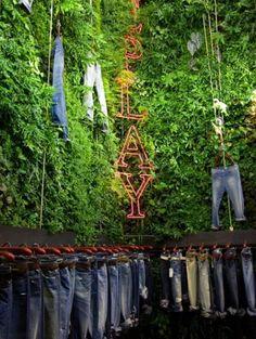 vertical garden in the store + green wall