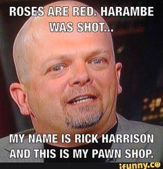 Harambe Shitpost