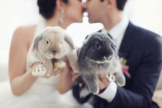 bride and groom with bunnies via ruffledblog.com