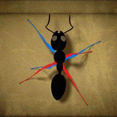 This is how an ant walks:   28 Clever GIFs That Completely Explain Everyday Things