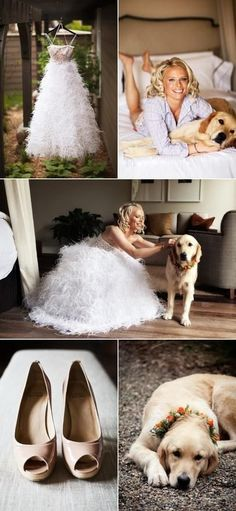 Pictures with the dog on the wedding day.. this will be happening!