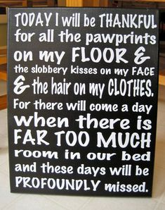 Today I will be thankful for pawprints...