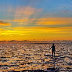 Sunrise or sunset There's always time for paddle boarding in #miami  courtesy of@leesea78.  Tag someone to share this with!
