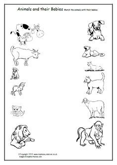 Here's set of cards for matching baby animals to their