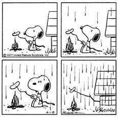 Peanuts - This strip was published on June 8th, 1977.