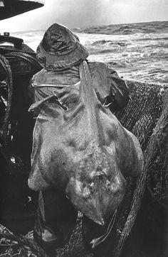 In the North Sea, 1964 by Yuri Krivonos
