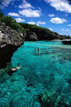 Limu Pools -  Niue... This is where Limu comes from.