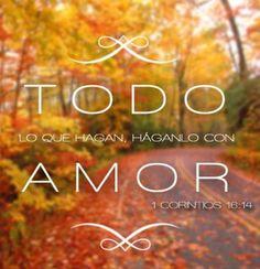 1 Corintios 16:14
