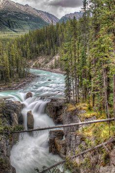 Sunwapta Falls. Jasper National Park, Canada
